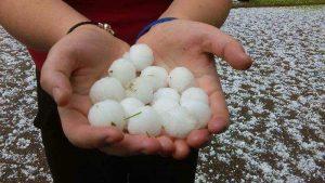 Hands holding golf ball sized hail.