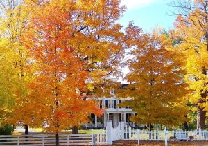 discover why why autumn is the ideal season to hire a roofing contractor company.